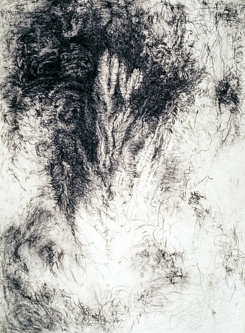 Strong Attractions, Subtle Repulsions IV,charcoal, Japanese rice paper